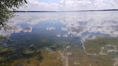 zwischen himmel und erde (hornbym) Tags: refelction refelctive clouds water sky horizon mirror pondlife