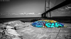 LX Skate (Paullus23) Tags: skate skatepark lisbon lisboa parquedasnacoes bridge ponte pontevascodagama bridgevascodagama bnw blackandwhite pretoebranco graffiti grafite grafitti