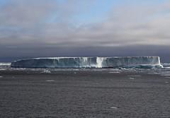 001 Iceberg At Gael Hamke Bugt   (7) (Richard Collier - Wildlife and Travel Photography) Tags: greenland arctic seascape iceberg ice gaelhamkebugt