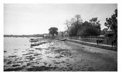 Vannes - presqu'île de conleau (floguill) Tags: leica ic elmar 35mm 3535 fp4 lc29