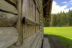 Wittemle-Hütte bei St. Blasien, Bokeh