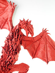 Still need a good time to refold this model ... (adam tran) Tags: origami wyvern