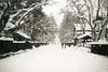 2016_Fall_Tohoku_Ep1-2 (lscott200) Tags: 2012 winter trip travel japan tohoku akita kakunodate 日本 東北地方 秋田県 角館 olympus ep3 micro43 mzuiko mzd mzuiko12mmf2