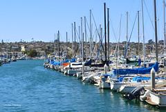 Boats (lauren_mackay) Tags: yachtclub boats bay harbor docks sandiego pointloma shelterisland california