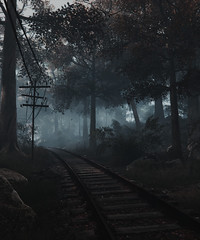 """""""Road to nowhere"""" (L1netty) Tags: forest road thevanishingofethancarterredux screenshot games gaming reshade pc theastronauts landscape outdoor scenery 4k color videogame"""