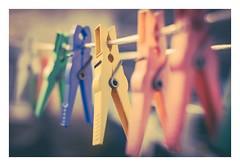 Laundry Time (Eckehard Straßweg) Tags: fujinonobjektiv fujifilmxt2 wäscheklammern clothespins outdoor color red blue vintagestyle wäscheleine clothesline fujinonbokeh green yellow lomography lomografie