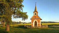 small chapel (Erich Hochstöger) Tags: kapelle chapel baum tree feld field landschaft landscape natur nature canoneos70d sigma1750f28
