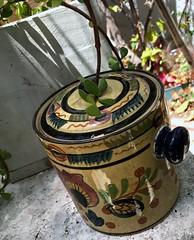 Ethiopian pot (LarryJay99 ) Tags: photostream iphone7 pots queenofsheeba vessel iphotography flickr pot plant iphonography container plants ethiopianpot iphone7plusbackdualcamera399mmf18