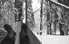 Winter Hammocking (JeffAmantea) Tags: winter hammock snow black white whiteblack seven summits rubber boots trees tree forest lounge relax solitude serenity landscape rossland range trail kootenays kootenay bc british columbia canada film analog vintage nikon fe2 24mm 28 ilford xp2 super 400 iso grain contrast cold outdoor outside wonderland