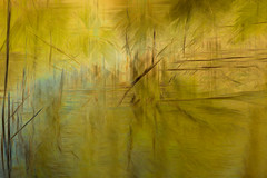 DOWN BY THE CREEK_ (Deborah Hughes Photography) Tags: bearsearsnationalmonument utah southernutah desert creek indiancreek icm intentionalcameramovement incameraeffects multipleexposures impressionism impressionistphotography abstract abstractnature abstractphotography