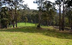 L244 Jenny Lane, Nethercote NSW