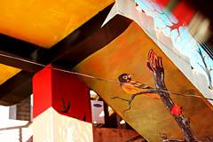 Bird under a bridge (abrinsky) Tags: india nagaland kohima