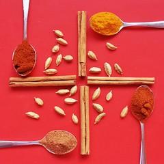 132/365: Spices (Den's Lens 2000) Tags: flickrfriday spice curry turmeric paprika nutmeg cinnamon cardamom square symmetry