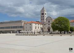 Zadar (4) (Ivica Pavičić) Tags: