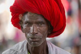 Inde: l'homme au turban (Rajasthan).