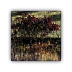 L'arbre de l'étang (jldum) Tags: arbre lac lake nature artist art abstract abstrait eau water reflections reflets