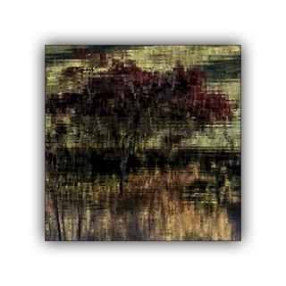 L'arbre de l'étang