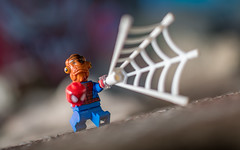 Look out! Here comes the Spidersquid! (Reiterlied) Tags: 18 35mm ackbar d500 dslr lego legography lens minifig minifigure nikon photography prime reiterlied sftoyphotosafari spiderman stuckinplastic tinytoysbigscreen toy trap