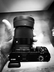 Sigma 30mm 1.4 contemporary (Gaetan682) Tags: emount f14 14 30 30mm sigma favoris like follow backcamera shot iphone7 love lens contemporary a6000 6000 alpha sony