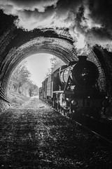 Into the darkness (Tony Teague (Slowcomo)) Tags: 30742charters canoneos5dmkiv gcrn greatcentralrailwaynottingham lmsstanierclass8f no8274 tamron28300mmf3563divcpzdlens freighttrain barnstontunnel leicestershire heritagerailway steamrailway preservedrailway steamlocomotive tonyteague