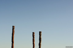 Totems of the South Pacific (smellerbee) Tags: minimalism minimalist sky totem blue outdoors outdoor three flat nz newzealand napier northisland pentax pentaxkr digital colour color