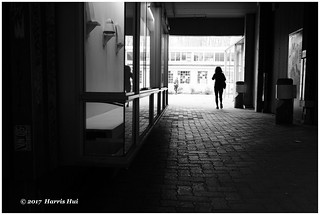 Walking To The Light - Granville Island XP6416e