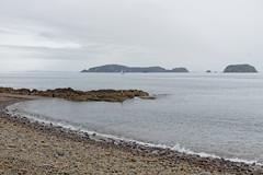 Półwysep Coromandel | Coromandel Peninsula