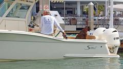 A Man & His Dog (soniaadammurray - Off) Tags: iphone fence hff man dog boat restaurant water sea land dock boating