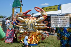 Well... he IS crabby... (Omunene) Tags: donaldtrump jazzfest artsdemotent neworleansjazzandheritagefestival2017 crab gecarcinusquadratus ignorant dense foolish dullwitted slow simpleminded vacuous vapid idiotic imbecilic obtuse doltish thick dim dimwitted slowwitted dumb dopey dozy moronic cretinous peabrained halfwitted braindead boneheaded thickheaded woodenheaded muttonheaded daft silly unintelligent scatterbrained nonsensical