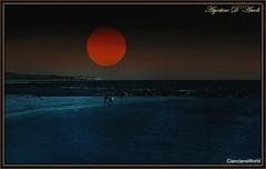 Mare/Luna - Maggio-2017 (agostinodascoli) Tags: luna mare seccagrande art digitalart digitalapinting texture nature spiaggia agostinodascoli photoshop photopainting landscape paesaggi nikon nikkor sicilia