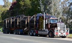 Kenworth (quarterdeck888) Tags: trucks photos truckphotos australiantrucks outbacktrucks workingtrucks primemover class8 overtheroad interstate frosty quarterdeck jerilderietrucks jerilderietruckphotos flickr bdoubles logtruck kenworth t904 spiders logskels