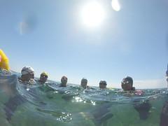 G0138124 (Visit Pilar de la Horadada) Tags: swimmers meeting point hibernismare swim natación nadar milpalmeras pilardelahoradada alicante costablanca vegabaja comunidadvalenciana quedada beach strand swimm