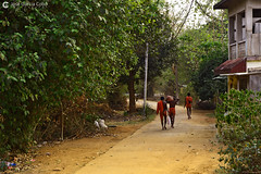 17-04-10 India-Orissa (34) Nayagarh R01 (Nikobo3) Tags: asia india orissa nayagarh rural color culturas social gentes people sadhu travel viajes nikobo joségarcíacobo nikon nikond800 d800 nikon247028 flickrtravelaward ngc wonderfulworld