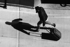 IMG_8270 (giltay) Tags: blackandwhite blackwhite sidewalk running man luggage shadow ruedelacathédrale
