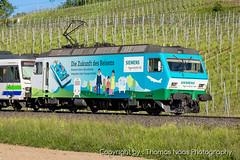 456 092-6 : Siemens (Thomas Naas Photography) Tags: freienbach schweiz switzerland eisenbahn railways zug züge train lokomotive outdoor fahrzeug werbeloks advertising spezialbemalung specialpaint sob südostbahn re456 siemens