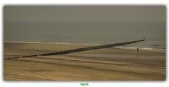 HURDLE APPROACHING (régisa) Tags: cadzand bad nederland paysbas zeeland plage beach estran echoandthebunnymen runner coureur hurdle obstacle
