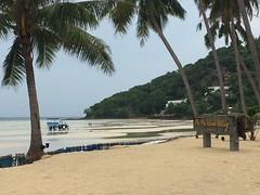 Phi Phi Island Village
