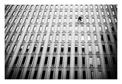 I don't do windows (DHaug) Tags: cleaning spring ottawa window dangling office tower building working fujifilm x100f idontdowindows washing