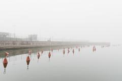Tammasaarenranta Marina (pni) Tags: fog mist water buoy sea quiet fence helsinki helsingfors finland suomi pekkanikrus skrubu pni