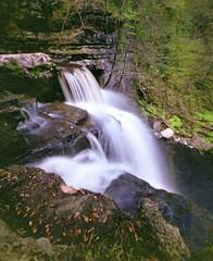 Oak leafs and waterfalls (wheehamx) Tags: