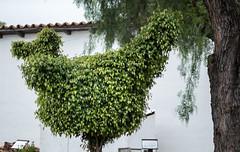 PEDB20170509-182.jpg (EricBier) Tags: sculpture place gitzotripod 20170509missionbasilicasandiegodealcala event implement photoouting mssnbsllcsndgdall artwork category unidentified bird abbreviationforplace sandiego 92108 animalia plantae biological