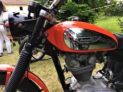 Scrambler 1973 (MarioLaser) Tags: iphone se scrambler 350cc moto ducati byke