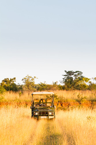 KrugerParkREIZ&HIGHRES-107