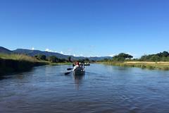 Canoeing on an Arm of the Zambezi River (Joe Tecza) Tags: zambezi zambeziriver lowerzambezinationalpark zambia canoe canoetrip