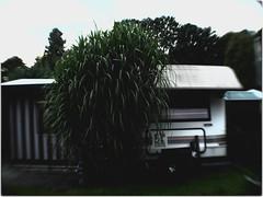 Home Sweet Home 07 (daniel.stark) Tags: home camping campingplatz trailer mobil heim mobilheim