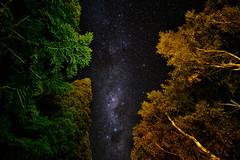 A Hole in the Sky  [ Explored ] (Mike_Mulcahy) Tags: milkyway fujifilm fuji fujinon xt1 samyang rokinon 12mm f2 newzealand nz southisland tekapo laketekapo night astro astrophotography thereisunrestintheforest rush thetrees longexposure