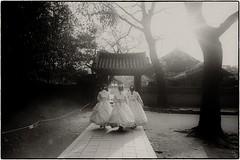 ((Jt)) Tags: travelphotography streetphotography asia korea jeonju 35mmsummilux leicam4 leica jtinseoul pushedfilm blackandwhite kodak film buyfilmnotmegapixels