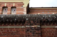 The Wall (J Allan-1) Tags: zed ward asylum mental defective