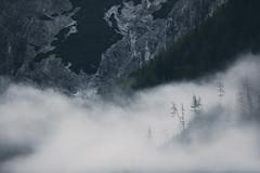long gone (STEPtheWOLF) Tags: morning clouds fog tree mountain rock sunrise magic longgone nature wild mystery mystic stepthewolf wolfgangschrittwieser austria styria hochschwab bodenbauer canon 5d3 300mm