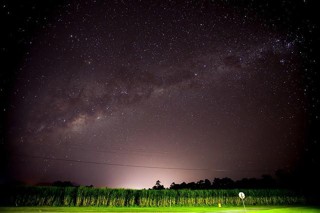 満天の星空見学とワイルドアニマル探索ツアー